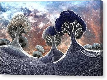Broccoli Planet In Winter Canvas Print by Dr-Pen