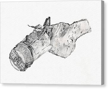 Broken Bottle Canvas Print by Donald Maier