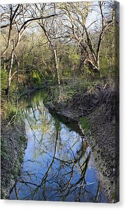Broken Branch Creek Canvas Print