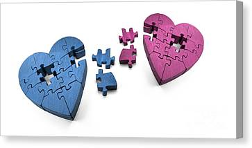Broken Hearts Canvas Print