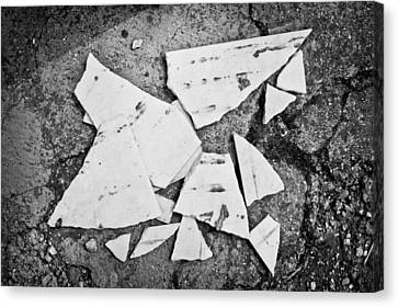 Broken Tile Canvas Print by Tom Gowanlock