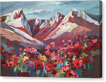 Broken Top Wildflowers Canvas Print