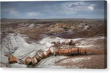 Petrified Forest Arizona Canvas Print - Broken Tree by Joseph Smith
