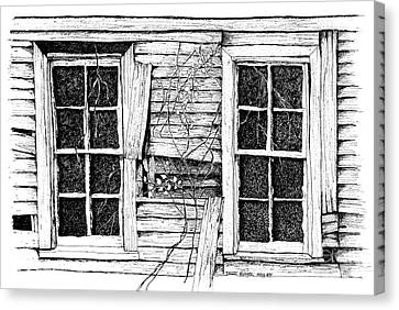 Broken Windows And Vines Canvas Print by Dawn Boyer