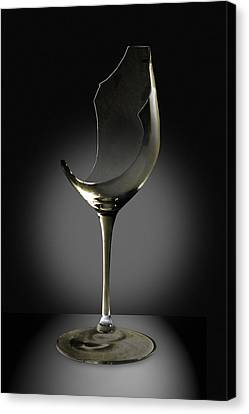 Broken Wine Glass Canvas Print by Yuri Lev