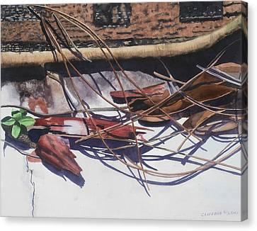 Brokendownontheground Canvas Print by Cory Clifford
