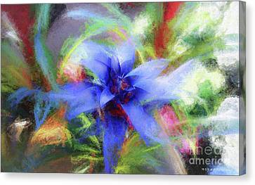 Bromeliad Exotic Tropical Plant Canvas Print by Mona Stut