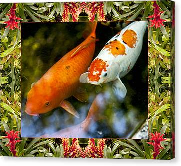 Bromeliad Koi Canvas Print by Bell And Todd