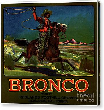 Bronco Redlands California Canvas Print