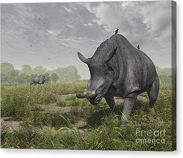 Feeding Canvas Print - Brontotherium Wander The Lush Late by Walter Myers