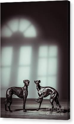 Bronze Greyhound Figures Canvas Print