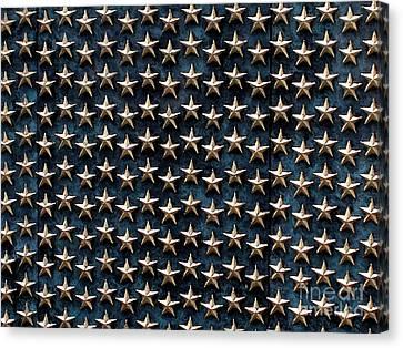 Bronze Stars Canvas Print by Steve Grisham