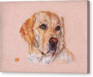 Working Dog Canvas Print - Brooke by Liz  Lamb