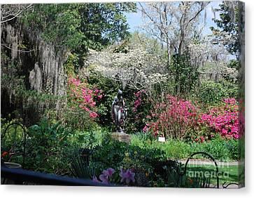Brookgreen Gardens 2 Canvas Print
