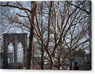 Brooklyn Bridge Thru The Trees Canvas Print by Rob Hans