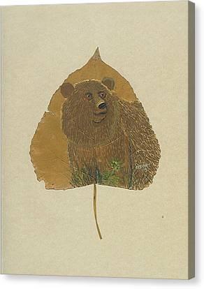 Brow Bear #2 Canvas Print