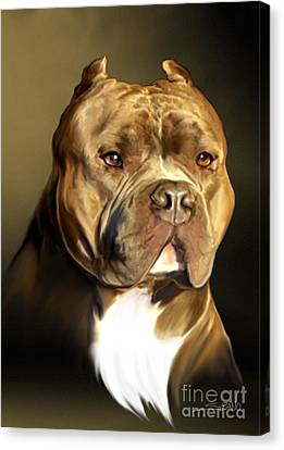 Brown And White Pit Bull By Spano Canvas Print by Michael Spano