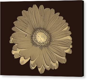 Brown Art Canvas Print by Milena Ilieva