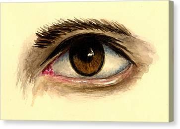 Brown Eye Canvas Print by Michael Vigliotti