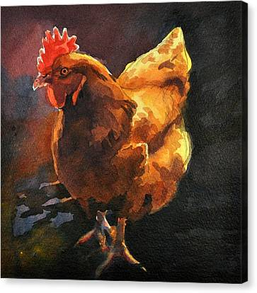 Brown Hen Canvas Print by Spencer Meagher
