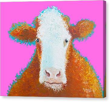 Brown Hereford On Pink Canvas Print