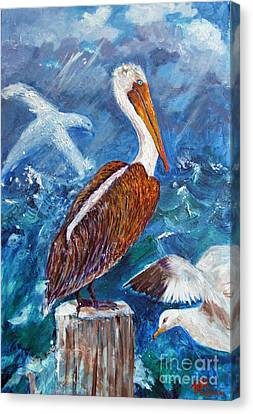 Brown Pelican With Gulls Canvas Print