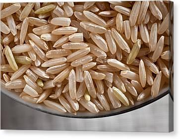 Brown Rice In Bowl Canvas Print by Steve Gadomski