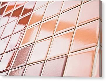 Brown Tiles Canvas Print by Tom Gowanlock