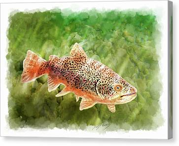 Brown Trout Canvas Print by David Wagner