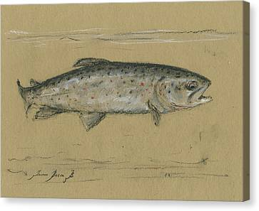 Brown Trout Canvas Print - Brown Trout by Juan Bosco