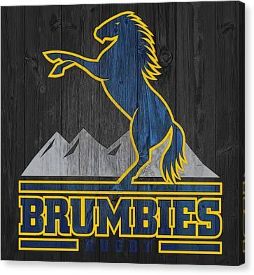 Brumbies Graphic Barn Door Canvas Print by Dan Sproul