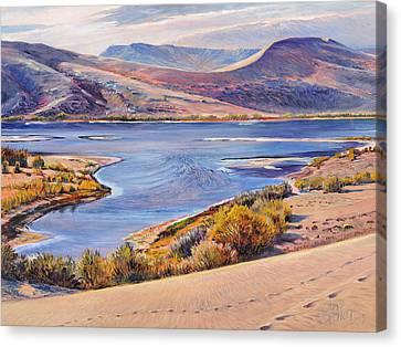 Bruneau Sand Dunes Canvas Print by Steve Spencer