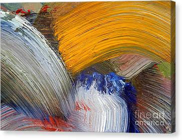 Brush Strokes Canvas Print by Michal Boubin