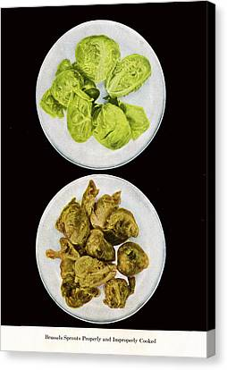 Brussel Sprouts Right And Wrong Canvas Print by John Scariano