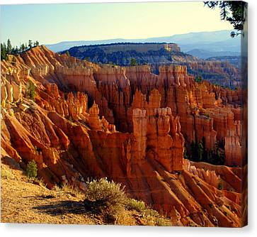 Bryce 3 Canvas Print by Marty Koch