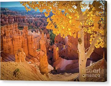 Twilight Views Canvas Print - Bryce Aspen by Inge Johnsson