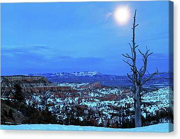 Bryce Blue Canvas Print by Nicholas Blackwell