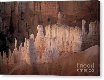 Bryce Canyon Hoodoos Canvas Print by Sandra Bronstein