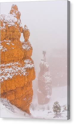 Thor Canvas Print - Bryce Canyon In The Snow by Christian Heeb