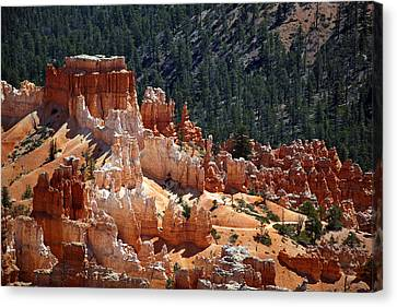 Bryce Canyon  Canvas Print by Jane Rix