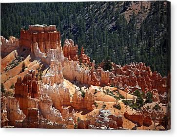Bryce Canyon  Canvas Print by Jane Rix