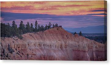 Bryce Canyon Canvas Print by Jim Cook