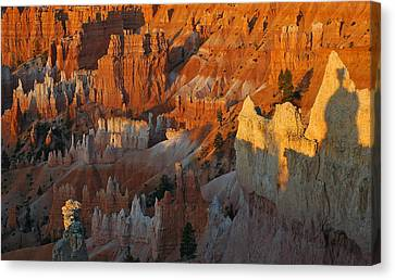 Bryce Canyon Morning Canvas Print by Bruce Gourley