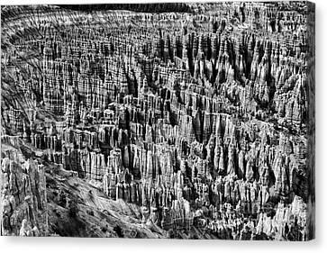 Bryce Canyon National Park Lll Canvas Print by Hideaki Sakurai