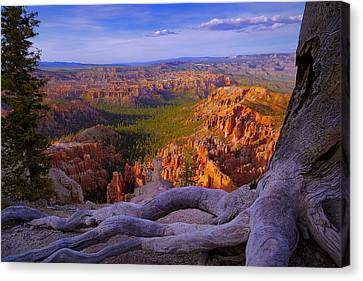 Bryce Canyon Overlook Canvas Print