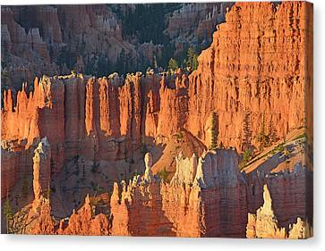 Canvas Print featuring the photograph Bryce Canyon Sunrise 2016c by Bruce Gourley