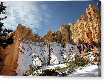 Bryce Towers Canvas Print