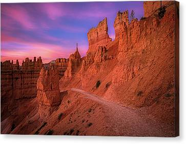 Hoodoos Canvas Print - Bryce Trails by Edgars Erglis