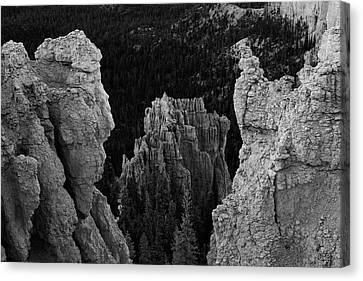 Btyce Canyon Np I Bw Canvas Print by David Gordon