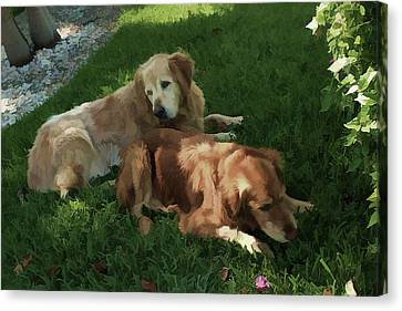 Bubba And Casey Canvas Print